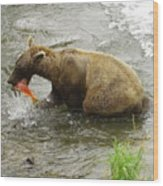 Grizzly Great Catch Wood Print