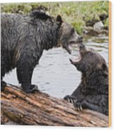 Grizzly Love Wood Print