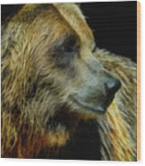 Grizzly Profile Wood Print