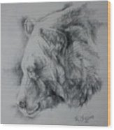 Grizzly Sketch Wood Print
