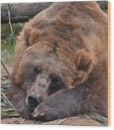 Grizzly's Naptime Wood Print