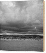 gronant dunes near Talacre beach sssi north wales uk Wood Print
