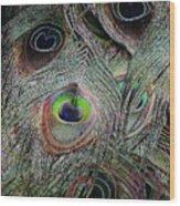 Groovy Peacock Wood Print