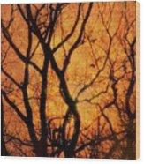 Groovy Sunshine Wood Print