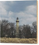 Grosse Point Lighthouse Portrait Wood Print