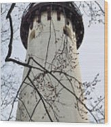 Grosse Point Lighthouse Tower Wood Print