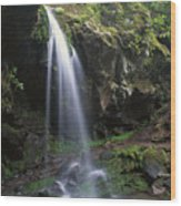 Grotto Falls In The Great Smokies Wood Print