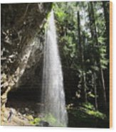 Grotto Falls Perspective Wood Print