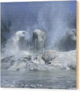 Grotto Geyser - Yellowstone National Park Wood Print