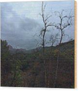 Grotto Trail In Rain Wood Print