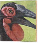 Ground Hornbill Wood Print