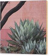 Group Of Cacti Wood Print