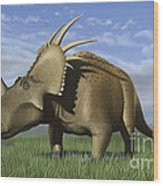 Group Of Dinosaurs Grazing In A Grassy Wood Print