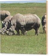 Group Of White Rhino Wood Print