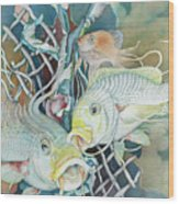 Groupers And Their Friends Wood Print
