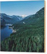 Grouse Mountain Wood Print