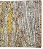 Grove 2 Wood Print