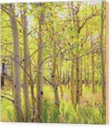 Grove Of Aspens On An Autumn Day Wood Print
