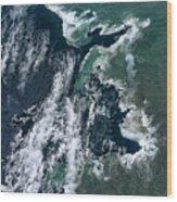 Growing Kapoho Coastline Wood Print