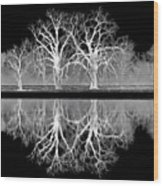 Growing Old Together - The Negative Wood Print