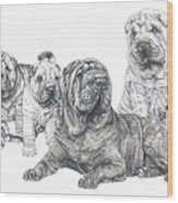 Growing Up Chinese Shar-pei Wood Print by Barbara Keith