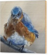 Grumpy Bird Wood Print