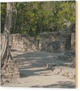 Grupo Coba At The Coba Ruins  Wood Print