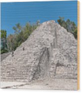 Grupo Nohoch Mul At The Coba Ruins  Wood Print