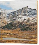 Guanella Pass Colorado Wood Print