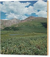 Guanella Pass Mt Bierstadt Wood Print by Michael Kirsh