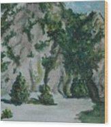 Guardando In Alto Wood Print
