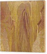 Guardian Angel Wood Print by Linda Sannuti