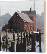 Guardian Of The Harbor Wood Print
