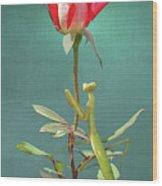 Guardian Of The Rose Wood Print