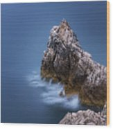 Guardian Of The Sea Wood Print