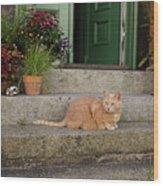 Guarding The Door Wood Print