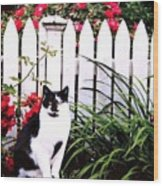 Guarding The Rose Garden Wood Print
