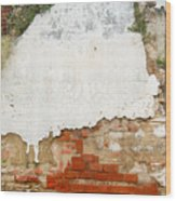 Guatemalan Ancient Wall Antigua Wood Print