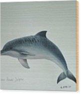 Guiana River Dolphin Wood Print