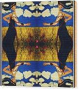 Guiar-symmetrical Art Wood Print