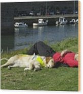 Guide Dog Relaxing Wood Print