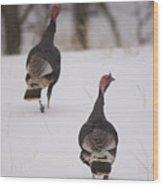 Guinea Fowl In The Snow Near Burwell Wood Print