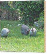 Guinea Hens Wood Print