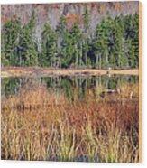 Guinea Pond - Sandwich New Hampshire Usa Wood Print