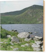 Guinness Lake Wood Print
