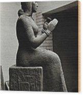 Gula, Mesopotamian Goddess Of Healing Wood Print