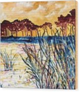 Gulf Coast Seascape Tropical Art Print Wood Print