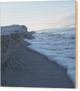 Gulf Shore 1 Wood Print