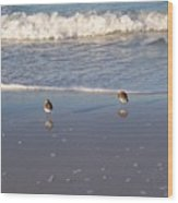 Gulf Shore 2 Wood Print