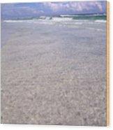 Gulf Shore Wood Print